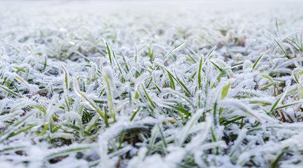 Мраз, температура на въздуха