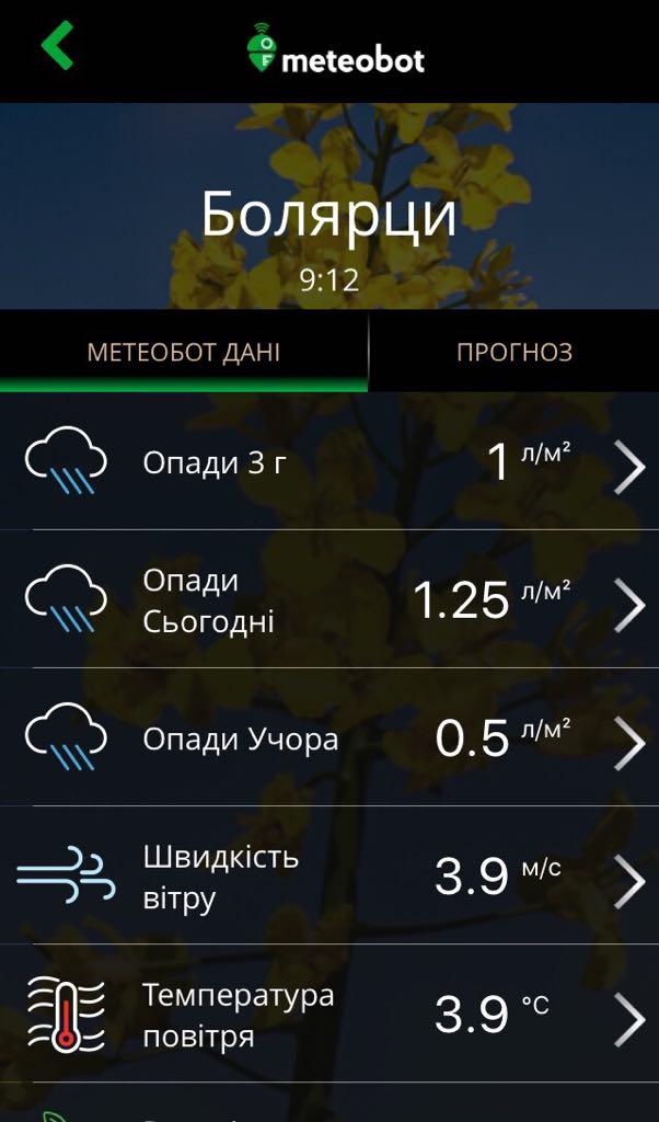 Meteobot App - Поточні дані